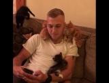 Очень милый парень и его котята