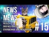 News Mews #15: Елена Темникова, Uber Cat и Песец