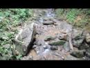 Верхом на Слонах к устью реки