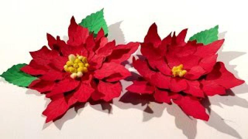 Christmas flower : Poinsettia : Paper flowers - Christmas decoration : Paper Craft : papierblumen