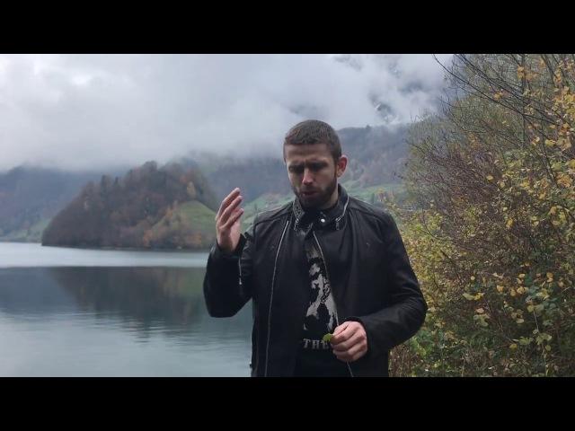 Навык 8. Управление коммуникацией с помощью жестов. Невербалика