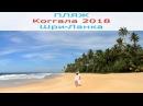 Коггала 2018. Лучший пляж на юге Шри-Ланки.