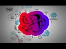 Antifragile Things That Gain From Disorder Nassim Taleb Animated Book Review
