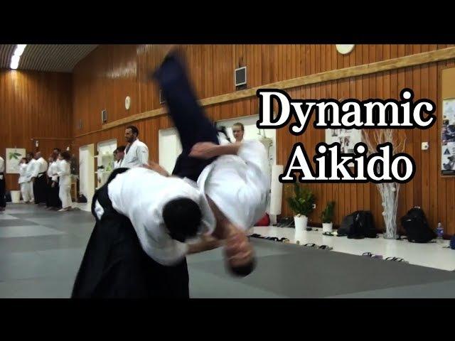 合気道の自由技 ダイナミックに投げる Dynamic Aikido JIYU WAZA