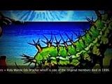 Ozric Tentacles Dharma Reggae