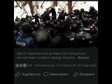 misha_malko video