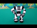 Mini Robosapiens. Wow Wee Robosapiens. Toys for kids Robot. Unpacking Mini Robosapiens