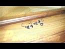 Мормышка MURENA вольфрам КОНУС обмазка с гл и камнем d5 цв 53 Саратов