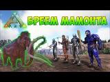 БРЕЕМ МАМОНТОВ И НОСОРОГОВ НА ЗИМНЕЙ ГОРЕ - ARK Survival Evolved