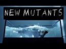 BTS [new mutants au]