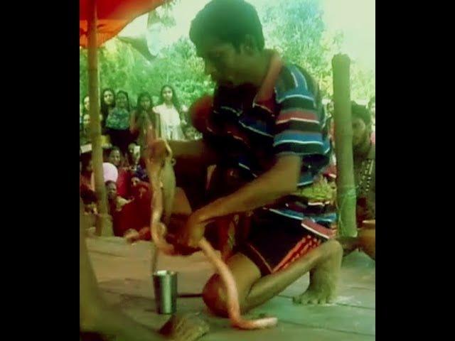 Snake dance fair in the village/Jhapan Khela pat 2