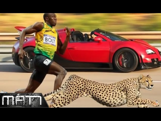 FASTEST PEOPLE WHO SET THE WORLD RECORD - INCREDIBLE TALENT