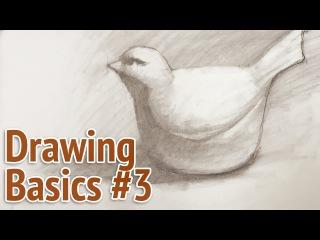 Drawing basics #3 - graphite drawing process using measurements