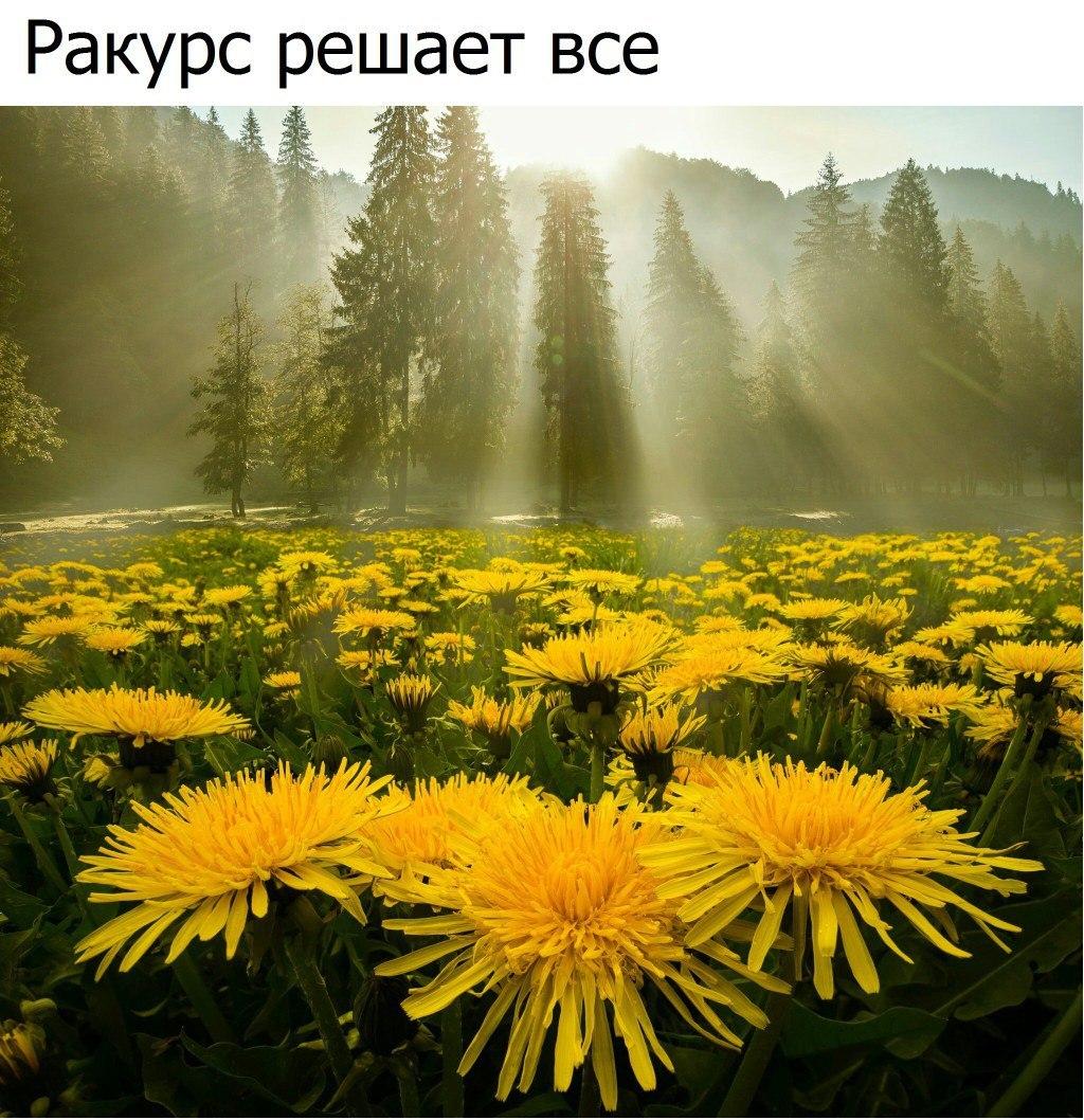 https://pp.userapi.com/c840139/v840139098/6428/CWyxk-yyheY.jpg