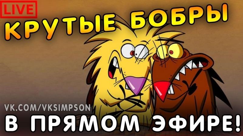 КРУТЫЕ БОБРЫ В ПРЯМОМ ЭФИРЕ (1-3 сезон подряд) | Angry Beavers live