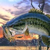 GoldFishNet - Риболовля, рыбалка, fishing