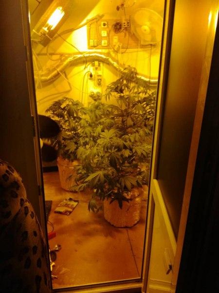 Житель Калмыкии подозревается в незаконном производстве наркотических средств.