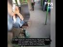 Как быстро починить педаль газа на автобусе лайфхак из Ростова