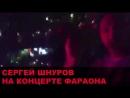 Сергей Шнуров на концерте Фараона