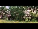 Высоцкий - Баллада о Любви - Стрелы Робин Гуда.mp4