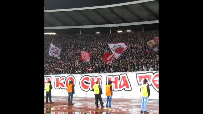 Црвена Звезда Фанаты поют Спартаковскую кричащему