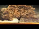 Arash feat Helena - Broken Angel - 720HD - VKlipe.com