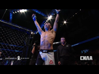 Fight Night St. Louis Stephens vs Choi - Daniel Cormier Preview