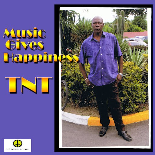TNT альбом Music Gives Happiness