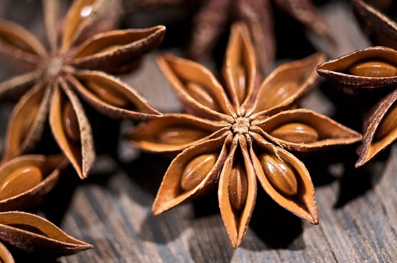 Статья Свойства семян аниса