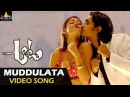 Aata Songs| Muddulata Muddulata Video Song | Ileana, Siddharth | Sri Balaji Video