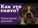 Как снят ролик | Рождественская реклама | Собака на батуте | Как создаются визуальные эффекты