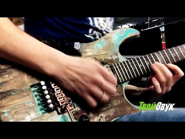 IbanezFamily by Poznysh Guitars