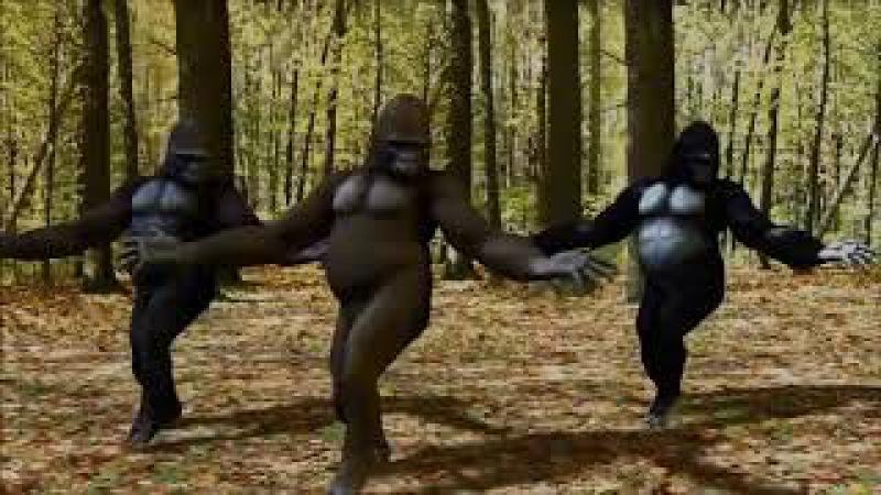 ömer faruk bostan erik dalı potpori goriller
