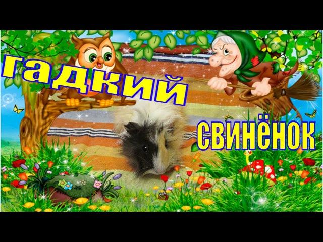 Гадкий свинёнок/некрасивые животные/Морская свинка/Пыжик в детстве