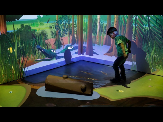 River of Grass Virtual Reality Interactive Everglades Tunnel Exhibit