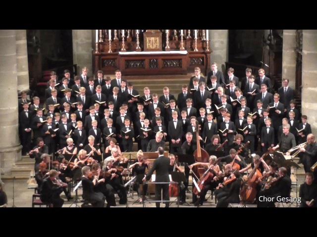 Windsbacher Knabenchor Dona nobis pacem aus h-Moll-Messe J. S. Bach (03.08.2017)