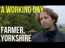 A Working Day Farmer Yorkshire
