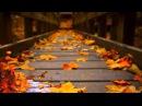 Самые красивые осенние мотивы Легран Саксофон 1