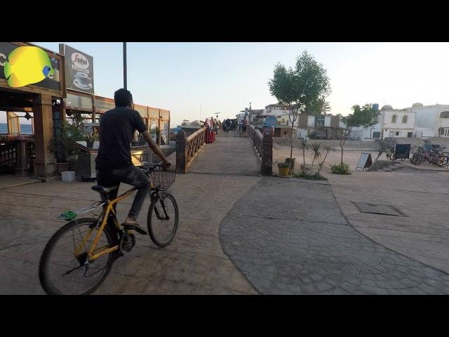 Мекка дайвинга и фридайвинга - бедуинский городок Дахаб на Синайском полуострове