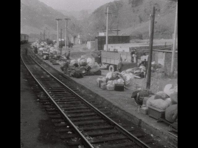 1988-ci il Aldərədən köç