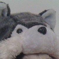Аватар Александра Прудникова