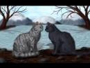 коты-воители Ласточка и Грач