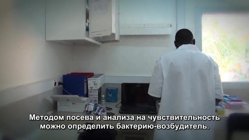 Антимикробная устойчивость Лечение