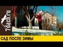 Сад после зимы - 7 дач(1)