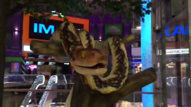 Змея от AET/Технологии Развлечений (ТЦ Central Park, г. Курск)