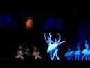 имперский балет. Лебединое озеро.
