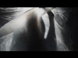 CONSOUL TRAININ - Obsession feat. Steven Aderinto &amp DuoViolins
