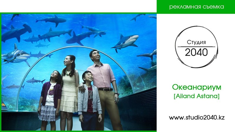 2040 - Океанариум в Астане - Центр семейного отдыха «Ailand»