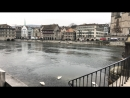 Цюрих Лиммат река 23 12 2018