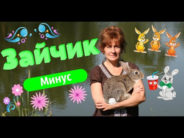 Зайчик - мінус